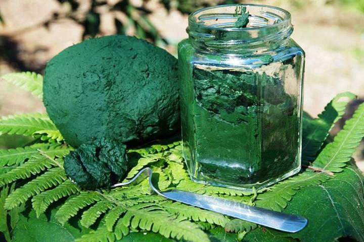 Una de las algas más utilizadas por sus comprobados efectos positivos en la piel
