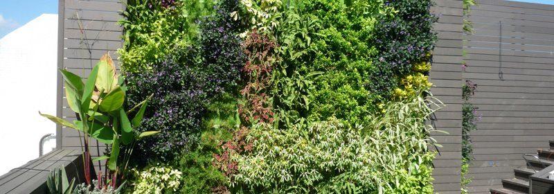 Pasos simples como hacer un jard n vertical exterior for Como construir un jardin vertical paso a paso