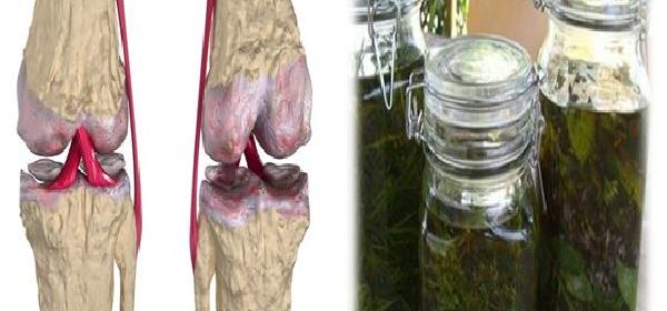 remedio-para-regenerar-cartilago-con-tomillo