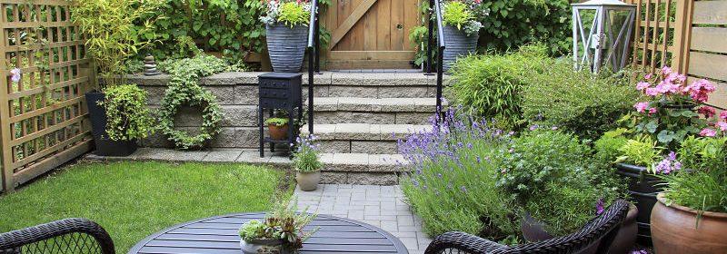 plantas-para-jardín-exterior