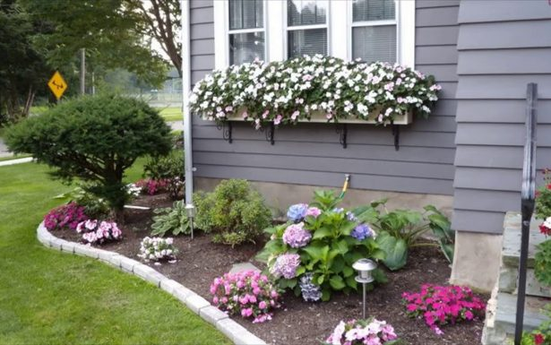 flores rosadas alrededor de una casa