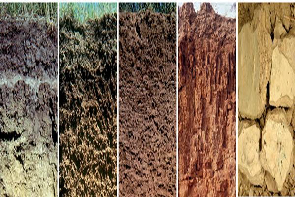 ¿Cómo está compuesto el suelo?